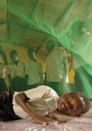 Malaria killed an estimated 655 million people in 2010 (World Health Organization).  Most of those deaths were African children.